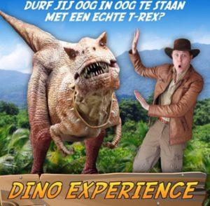 Dino_experience