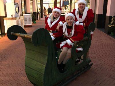 de kerstdames met arreslee