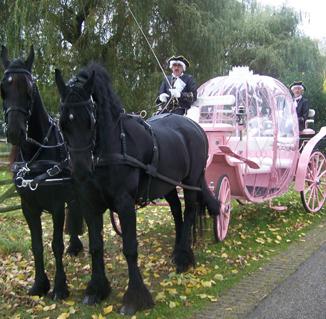 Roze Prinsessenkoets